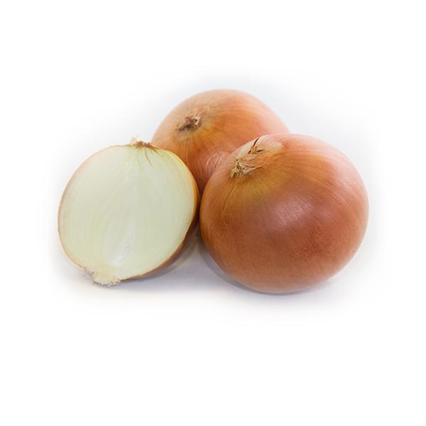 Cebolla de grano Aparici